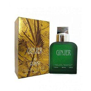 GINJER Perfume